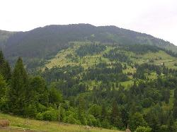 Borsa, Romania
