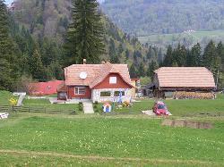 Paraul Rece, Romania