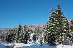 Stana De Vale, Romania