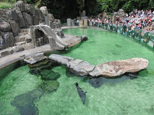 Gradina Zoologica din Praga - Zoo Praha