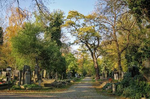 Cimitirul evreiesc din Olsany